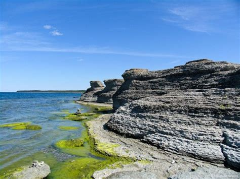 42 best images about Oland Island, Sweden on Pinterest
