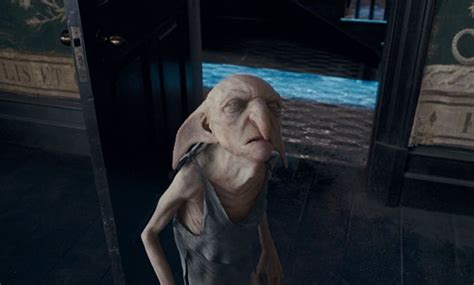 What happened to Kreacher the House Elf in Harry Potter